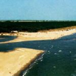 Scorcio della spiaggia alla foce del fiume Bevano
